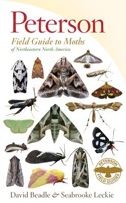 Peterson Field Guide to Moths of Northeastern North America By Beadle, David